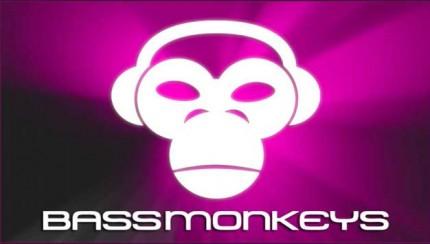bassmonkeys-Image