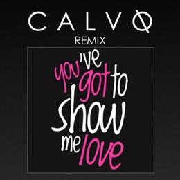 Robin S  - Show Me Love (Calvo Remix) - House Music Podcasts